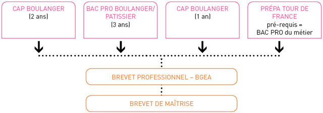 Compagnons Boulangers Patissiers