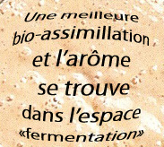 1316195726_arome_et_fermentation